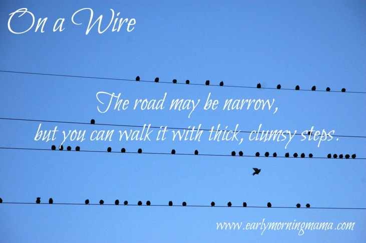 on a wire image