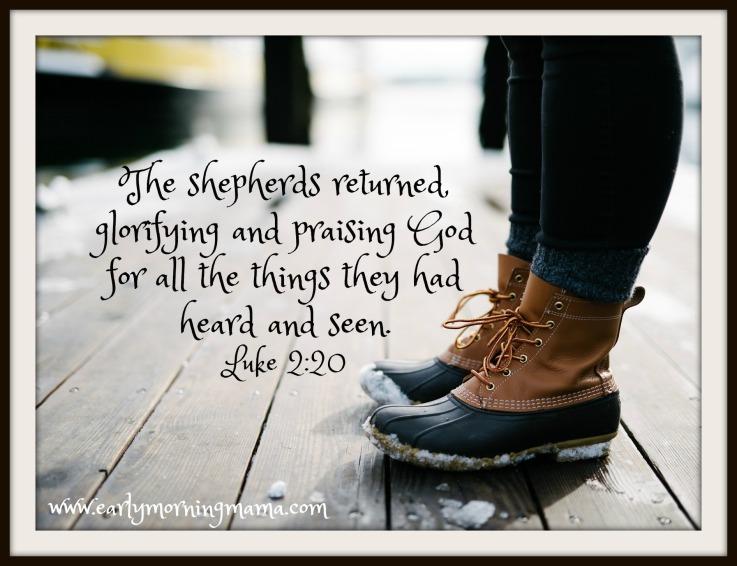 the-shepherds-return-image